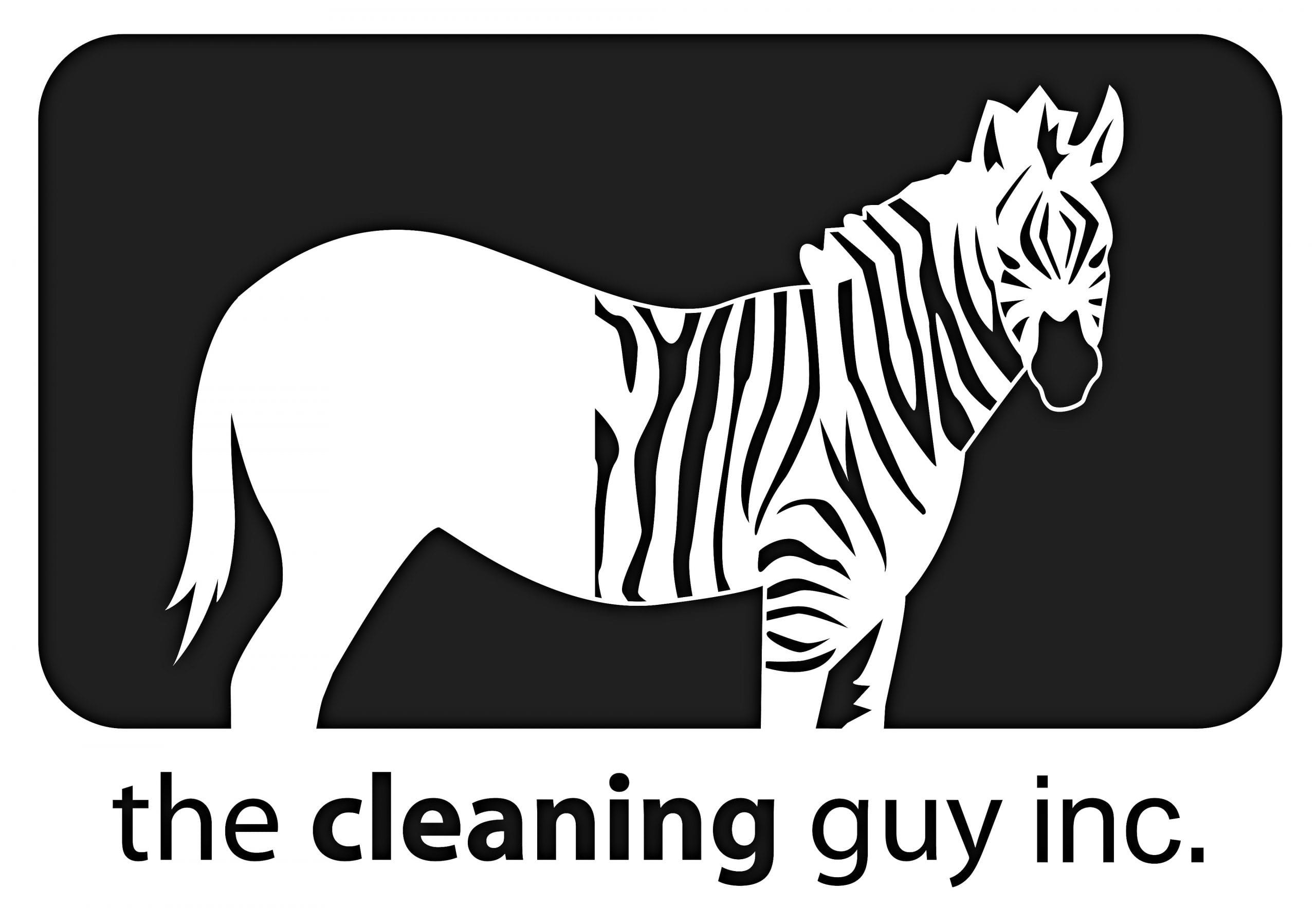 The Cleaning Guy logo